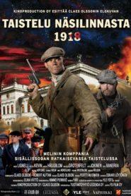 The Battle of Näsilinna 1918