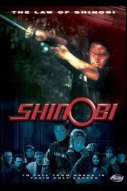 Shinobi: The Law of Shinobi