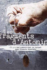 Fragments of Antonin