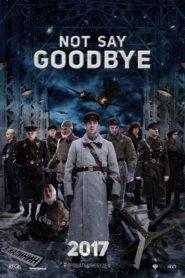 Not Say Goodbye