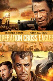 Operation Cross Eagles