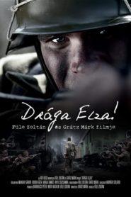 Dear Elza!