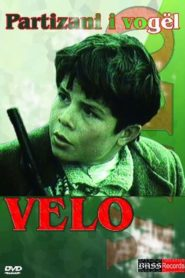 The little partisan Velo