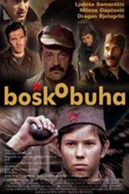 Bosko Buha